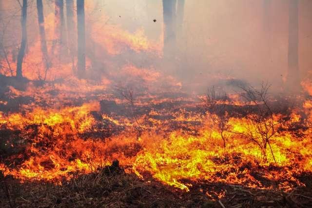 Chemin des Passes: 2 feux toujours hors contrôle
