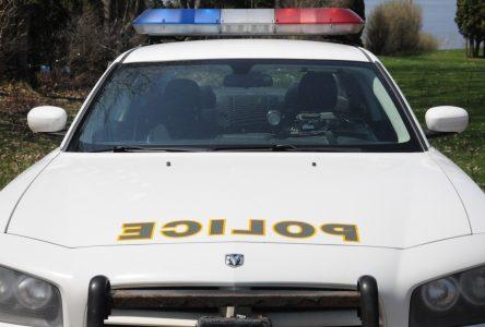 Série de perquisitions à Alma : quatre personnes arrêtés