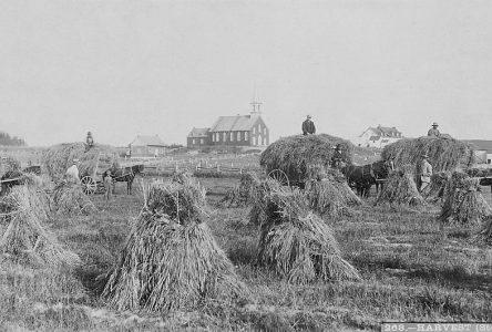 Les inondations de 1926-1928 (2e partie) : La tragédie