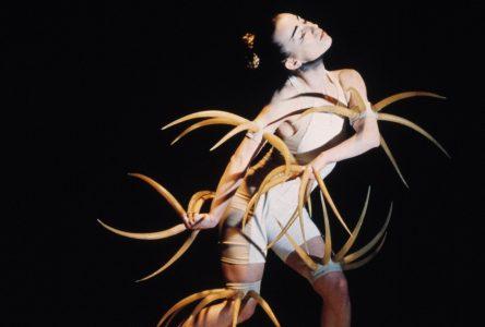 40 ans de carrière : La compagnie de danse Marie Chouinard bientôt à Alma