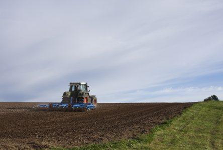 Main-d'oeuvre agricole : L'UPA met sur pied une coopérative de remplacement