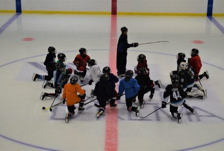 Hockey mineur: Vers une fusion des organisations dans Lac-Saint-Jean-Est