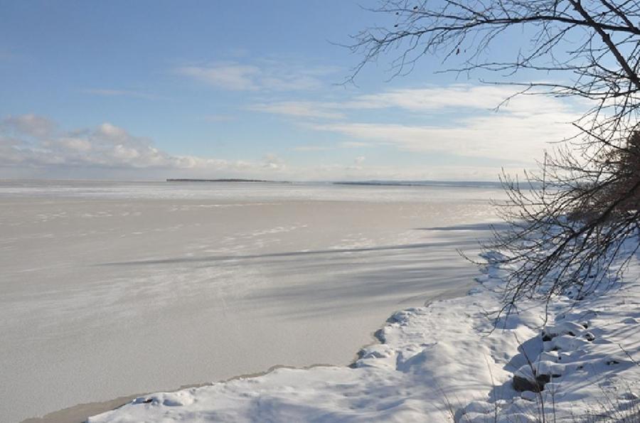 Comité de gestion durable du lac Saint-Jean : Ça ne bouge pas vite