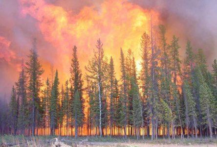SOPFEU : La foudre cause plusieurs incendies de forêt en juillet