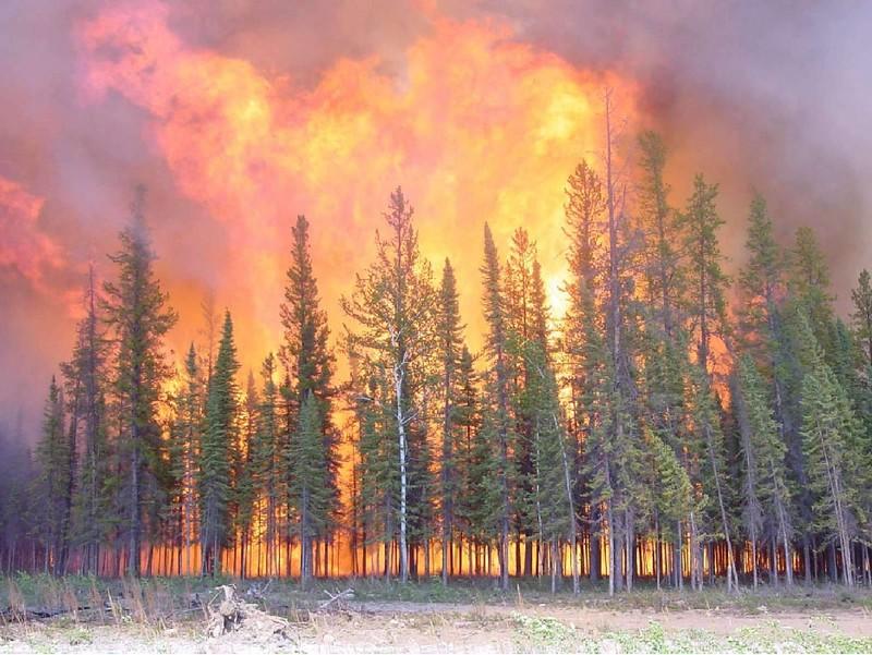 Chutes-des-Passes : Le feu hors de contrôle