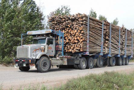 Industrie forestière : La FIM-CSN demande au gouvernement d'agir