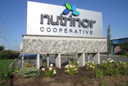 De nouvelles nominations à la direction de Nutrinor