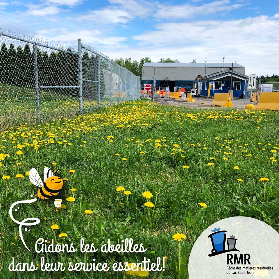 La Régie des matières résiduelles du Lac-Saint-Jean laisse pousser son gazon!