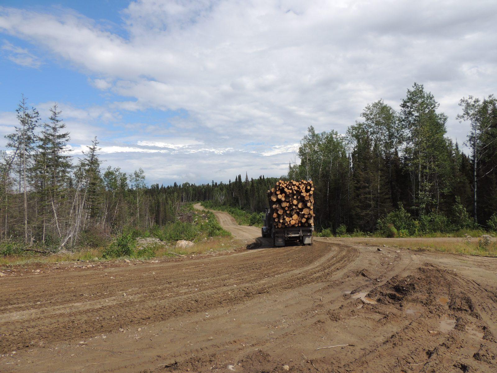 Sécurité des routes forestières: Daniel Perron interpelle le gouvernement