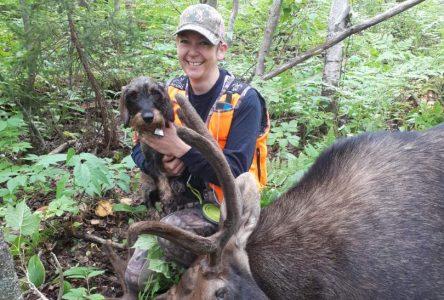 Conducteur de chien de sang : un précieux coup de main aux chasseurs