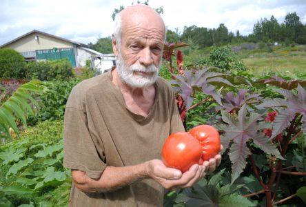 Jardins Santé : Les semences patrimoniales de Gérard Parent