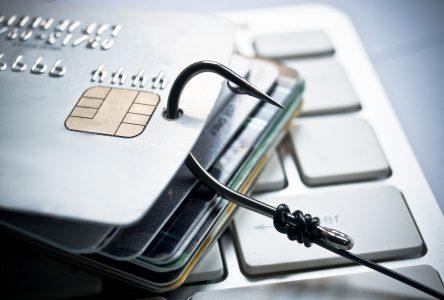 Réseau de fraudeurs par carte de crédits : plusieurs perquisitions dans la région