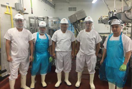 Main-d'œuvre: Les fromageries se tournent vers l'étranger