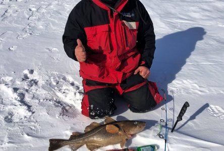 Ouverture de la pêche blanche à Saguenay: Pêcher en famille!