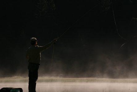 Pêche : comment bien utiliser un leurre