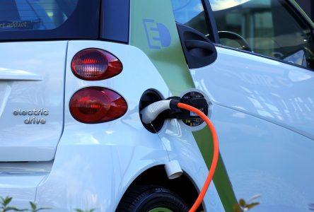 Salon du véhicule électrique du Saguenay-Lac-Saint-Jean: Les autos électriques c'est pour tout le monde